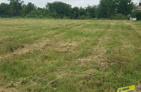 Proche Saint-Savinien à vendre terrain à bâtir 1400 m²